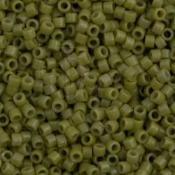 DB2124 - Duracoat opaque Cactus 50 gr