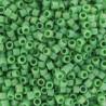 DB0877 - Mat Opaque Green AB 50 gr