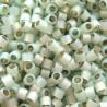 DB1454 - Silver Lined Moss Opal 50 gr