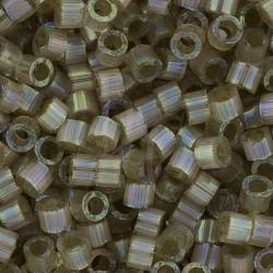 DB1876 - Silk Inside Cactus AB 5 gr